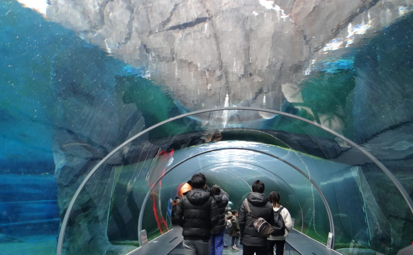 円山動物園~冬でも元気な動物園